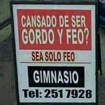 SoloFeo