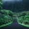 Botanical Garden Kaneohe Hawaii