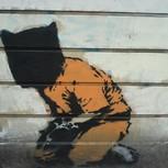 Guantanamo Bay Prisoner